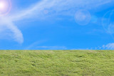 green grass and blue sky for background
