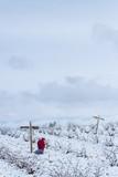 Una persona visitando un cementerio vacío lleno de nieve en invierno