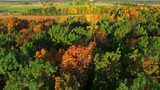 Aerial view of breathtaking autumn colors, aerial flyover view.