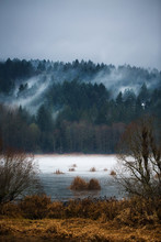 Herbst Fogs / Mists of Vancouver Island