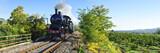 Treno a vapore tra campi coltivati