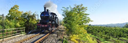 Staande foto Spoorlijn Treno a vapore tra campi coltivati