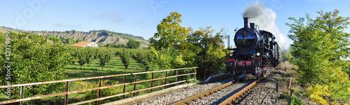 Deurstickers Spoorlijn Treno a vapore tra i campi coltivati