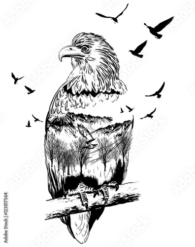Vector Double exposure, eagle, wildlife concept - 123817564