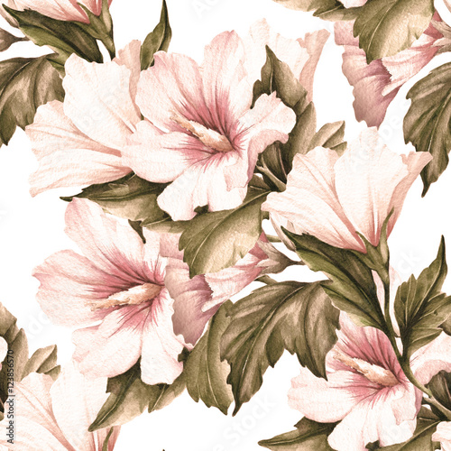 Seamless pattern with hibiscus. Hand draw watercolor illustration. - 123856570