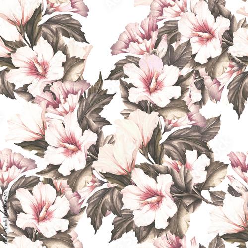 Fototapeta Seamless pattern with hibiscus. Hand draw watercolor illustration.