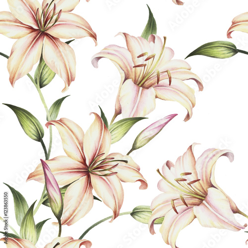 Seamless pattern with lilies. Hand draw watercolor illustration - 123863550