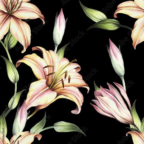 Szwu z lilii. Ręka narysować akwarela ilustracja