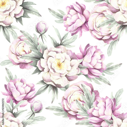 Seamless pattern with peonies. Hand draw watercolor illustration. - 123863572