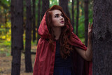 red, hood, girl, fairy, nature, green, young, people, person, summer, beautiful, attractive, outdoor, tale