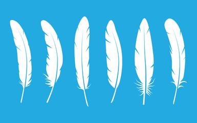 Feathers set on blue background