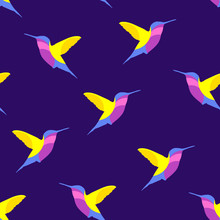 Seamless pattern hummingbird. Vector background