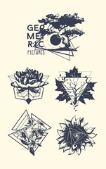 Set of blackwork tattoo art. Geometric hand drawn nature. Isolated vector illustration.