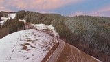 Aerial: Camera flying above forest with colorful clouds on winter time