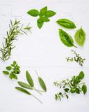 Various fresh herbs from the garden peppermint , sweet basil ,ro - 124087524