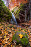 Waterfall in autumn forest / Autumn view of a waterfall among red rocks in the western Balkan Mountains, Bulgaria