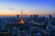 日本 �京�都心�スカイライン��京タワー 夕景