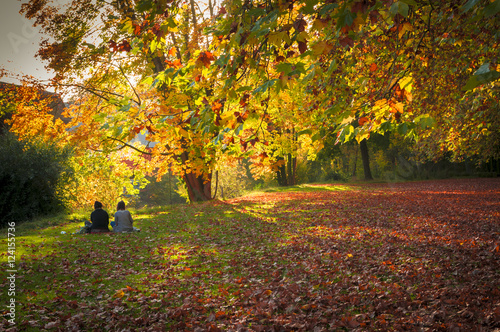 Leinwanddruck Bild Sitzendes Paar in der Ferne auf der Neckarinsel Tübingen im Herbst