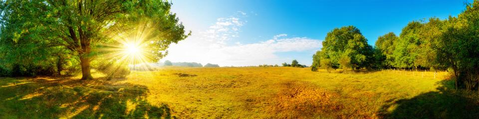Landschaft im Herbst, Panorama einer vom Wald umgebenen Wiese mit Sonne