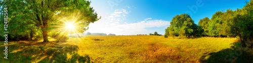 Krajobraz jesienią, panorama łąki w otoczeniu lasu ze słońcem