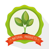 symbol natural product plant label vector illustration eps 10