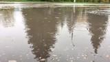 Центральная аллея города, скамейки, пешеходная дорожка под дождем