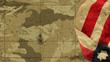 Usa Flag Mimetic Background