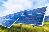 photovoltaics  in solar power station   - 124303151