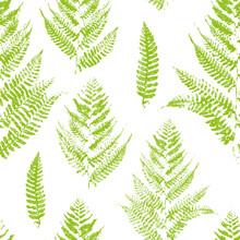 Nahtlose Muster mit Farbe druckt Farnblättern