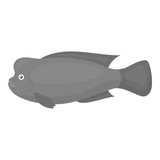 Stearocranus fish icon monochrome. Singe aquarium fish icon from the sea,ocean life monochrome.