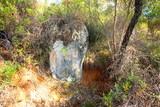 Rock exposure in Australian bush