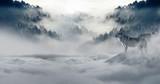 Wölfe in den Bergen mit Schnee bedeckt