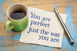 You are perfect just the way ...