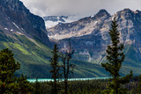 Icefields Parkway up to Jasper. This is a must-see-do drive! In