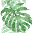 Cotton fabric seamless repeatable monstera leaf border