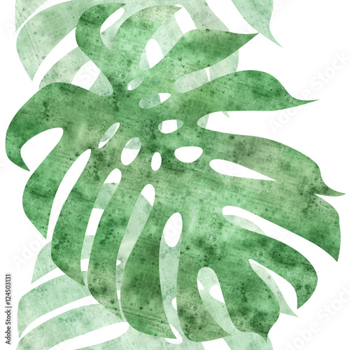 seamless repeatable monstera leaf border - 124503131