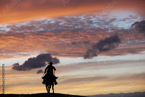 Cowboy on a horse Poster