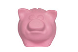 portrait of a pink piggy bank on a white background