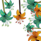 green and yellow tropical flowers frame over white background. vector illustration