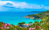Panoramic view over cavoli beach and coast in Elba island, Tuscany, Italy. - Fine Art prints