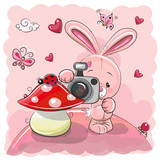 Cute cartoon Rabbit with a camera