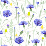 Cornflower field - seamless pattern. 