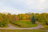 Fototapety Multicolored trees in a city park on autumn