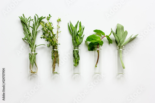 mint, sage, rosemary, thyme in glass bottles white background