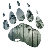 bear trail - 124837780