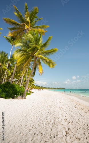 Saona Island in Punta Cana, Dominican Republic