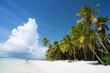 Saona Island in Punta Cana, Dominican Republic, Paradise