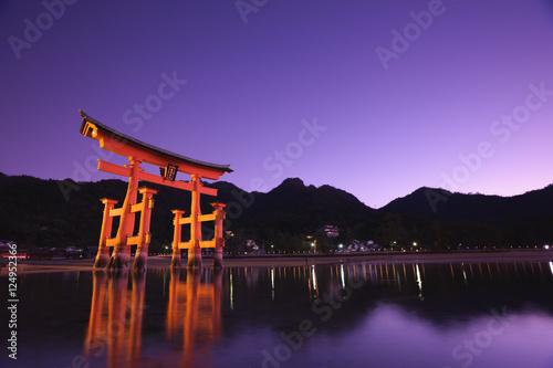 Fotobehang Snoeien 厳島神社大鳥居の夜景