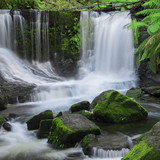 Fototapety The beautiful Horseshoe Falls after heavy rain fall in Mount Field National Park, Tasmania, Australia.