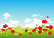 Springtime landscape with red poppies and butterflies.